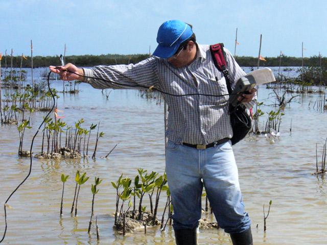 Estudios en materia de impacto y riesgo ambiental